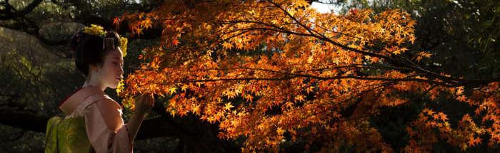 В Японию в октябре